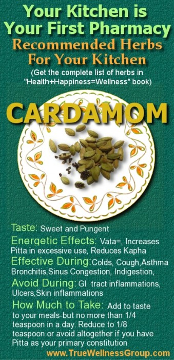 Common Herbs in the Kitchen: Your First Pharmacy - True